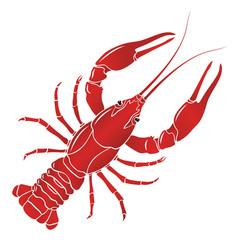Vector boiled red crayfish, crawfish