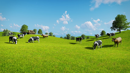 Wall Mural - Rural landscape with a herd of cows grazing on the green hills nearby from the rustic house. Realistic 3D illustration.