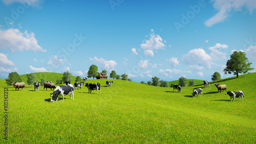 Wall mural Herd of cows graze on the open green meadows at spring day. Realistic 3D illustration.