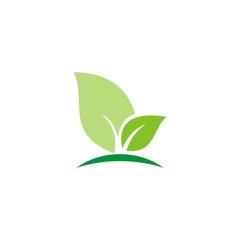 simple leaf logo