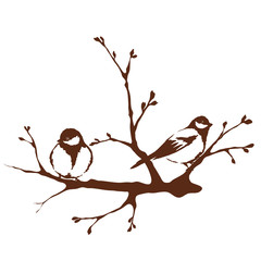 A birds on a branch, spring - vector illustration