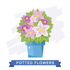 Spring flowers in pots. Raster flowers. Single flower on white background.