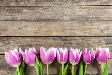 Tulip Flowers on Wooden Backdrop