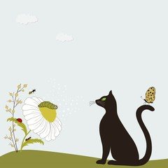 Cute cat with chamomile and insects