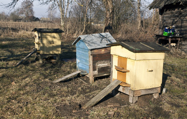 Old color bee hives in spring.
