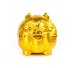 Chinese golden Pig piggy bank