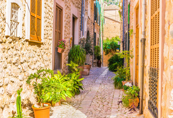 Fotomurales - Enge Gasse Mediterran Dorf Gebäude mit Topfpflanzen Dekoration