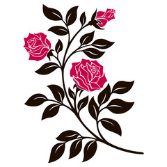 vector illustration, decoration element, black and white rose branch with red flowers