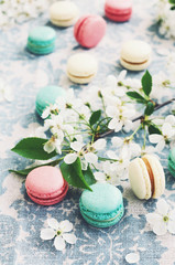 Raspberry, minty and vanilla macaroons decorated with blooming cherry flowers