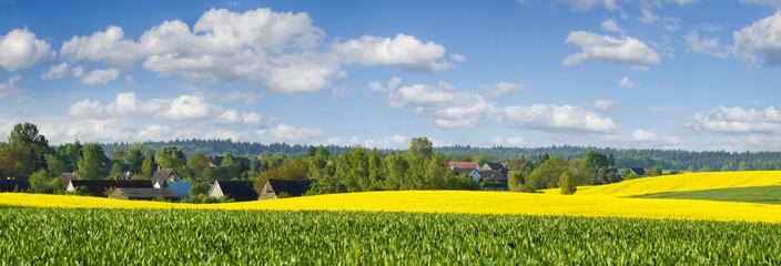 Obraz Wiosenne pola,widok na wieś. - fototapety do salonu