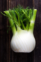 Fresh organic fennel on wooden background