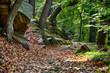 Wanderweg Bodetal im Herbst Harz