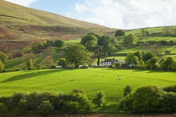 Lake District, Cumbria. UK. English countryside in spring