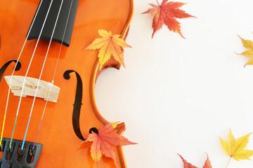 紅葉(もみじ)とバイオリン