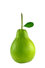 Green Pomelo isolated with clipping path.