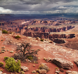 Fototapete - Canyonlands National Park, USA