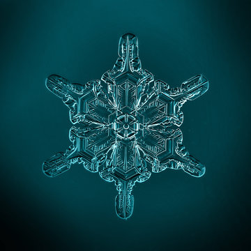 macro photo of snowflake on a black background isolated