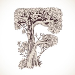 Magic forest hand drawn from trees by a vintage font - F