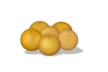 Kilogram oranges