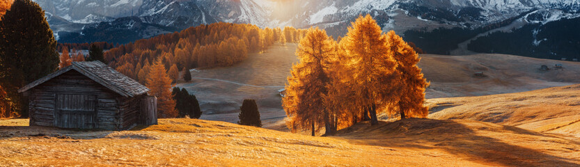Italy. Dolomites. Autumn landscape with bright colors, house and larch trees in the soft sunlight.