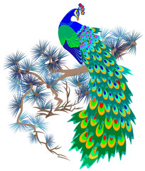 Illustration of fairyland bird sitting on a branch of pine, vector cartoon image.