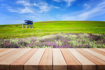 Empty top of wooden table and view of green hill blur background