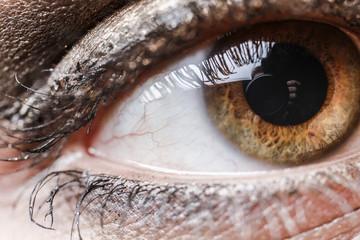 close up eye woman