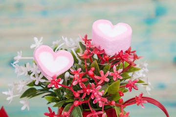 Heart shape with red watering can.Still life of love