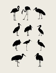 Flamingo Bird Silhouettes, art vector design