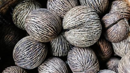 dry Cerbera oddloam's seed
