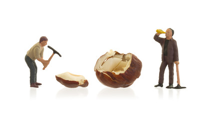 Miniature worker working with hazelnuts
