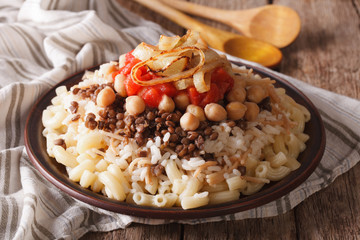 Egyptian Cuisine: kushari close-up on the plate. horizontal