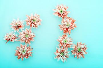 Fototapete - Macro of pink flower