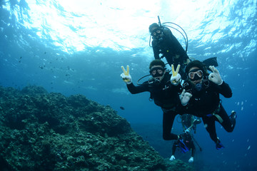 Wall Murals Diving Okinawa Scuba Diving