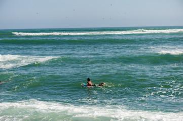 Boy is looking into flying birds. He is on surfborad