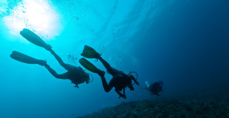 Group of scuba divers underwater