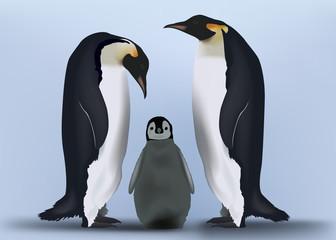 Pingouins - Famille