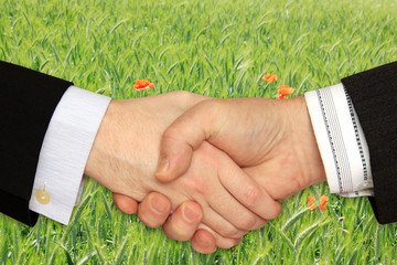 Businessmen shaking hands in front of the Nature Theme