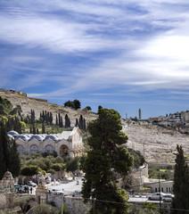 Jerusalem, getsemani