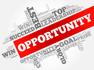 Opportunity word cloud, business concept