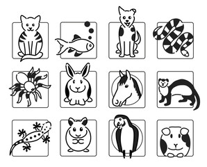 12 popular pet animal icons in black outline