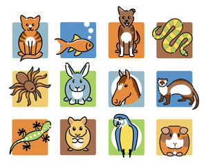 12 popular pet animal icons in colour
