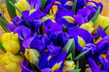 Bouquet of tulips with  irises. top view