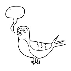 speech bubble cartoon pigeon