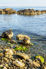 stones and seaweed on rocky coast of the sea