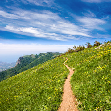 pathway in mountains