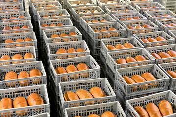 Industriealisierung: Brote zur Auslieferung in einer Großbäckerei // breads in a bakery in crates to delivery