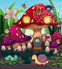 Insects and mushroom house in the garden