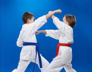 Athletes train karate punches and blocks