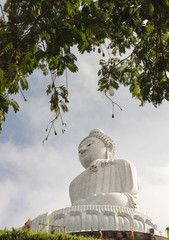 Big buddha in blurred tree border and sky